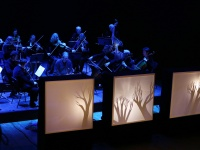 """The Orchestra of Playful Music Tells The Story"""