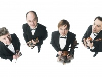 String Quartet at Variance